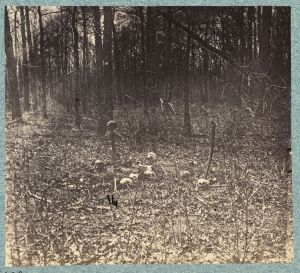 An 1865 photo shows skulls that still remained on the Chancellorsville battlefield, a grim reminder of what had happened here (Library of Congress).