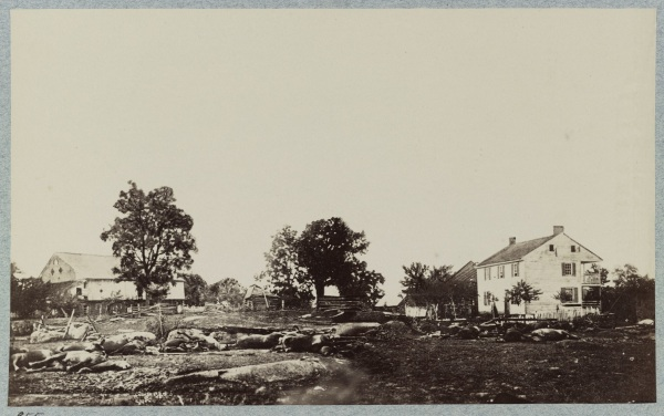 Dead horses from the 9th Massachusetts (Bigelow's) battery litter the ground by the Trostle farm, where Dan Sickles received the wound that cost him his leg (Library of Congress).