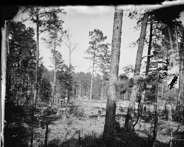 "Timothy O'Sulivan took this image, which he identified as ""Cold Harbor, Virginia. Camp in the woods,"" on June 6, 1864. The landscape looks much like this today  (Library of Congress)."